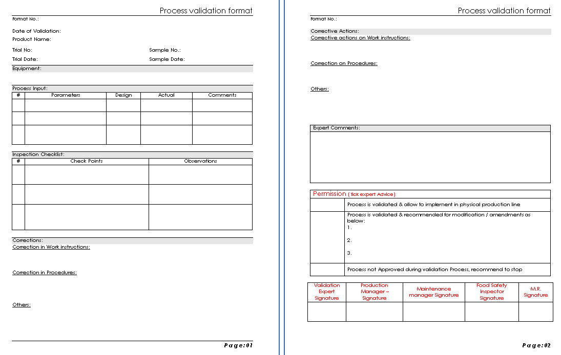 process validation format pg 1 - Process Format Template